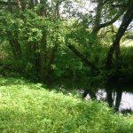 Naherholungsgebiet Teichholz